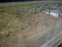 庭反対側の畑