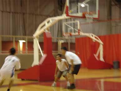 fist_basket2.jpg