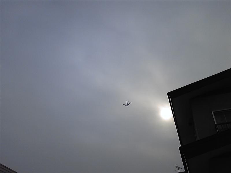 SH370960_d.jpg