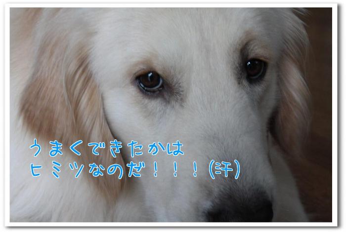 g_VRi.jpg