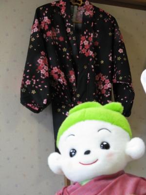 プリモちゃんと桜模様の作務衣