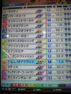 マフィン8戦目