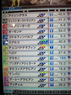 マフィン10戦目