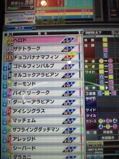 マフィン12戦目結果