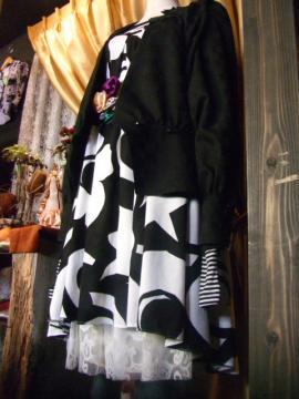 BLOG2010_0119RoscoeBlog20100007.jpg