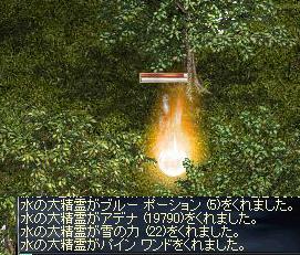 12/17水精霊ごみ