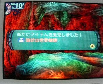 20070503230048.jpg
