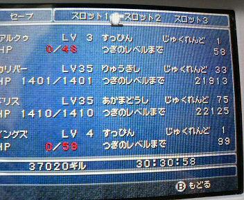 P1003048.jpg