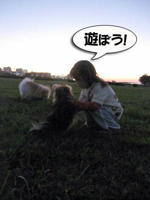 0219_3.jpg