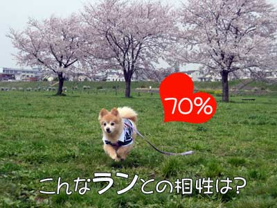 0412_run.jpg