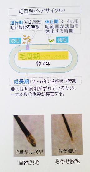 SBSH01551.jpg