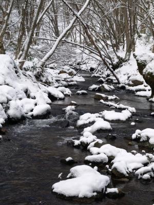 冬の達沢不動滝から流れる川
