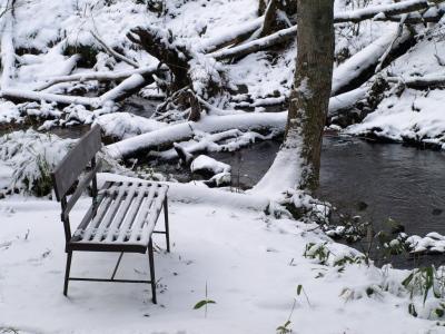 冬の達沢不動滝そばのベンチ