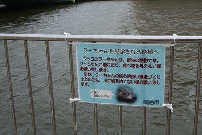 2009_0503_03.jpg