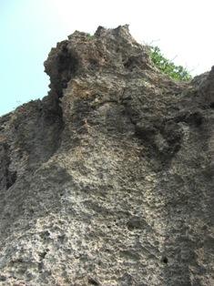 遊歩道サンゴ壁