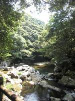 奄美大島観光10
