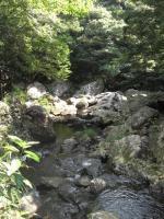奄美大島観光9