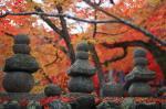 あだしの念仏寺