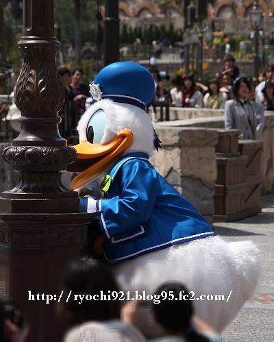 IMG_8032.jpg