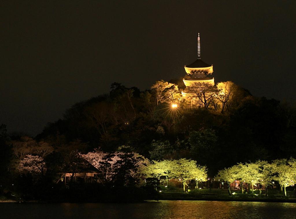 IMG_1249-sankei1.jpg