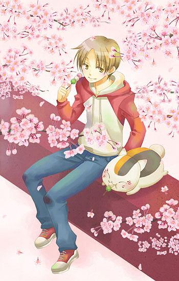 夏「先生、桜もちゃんと見てくれよ」 に「見とるわ!」