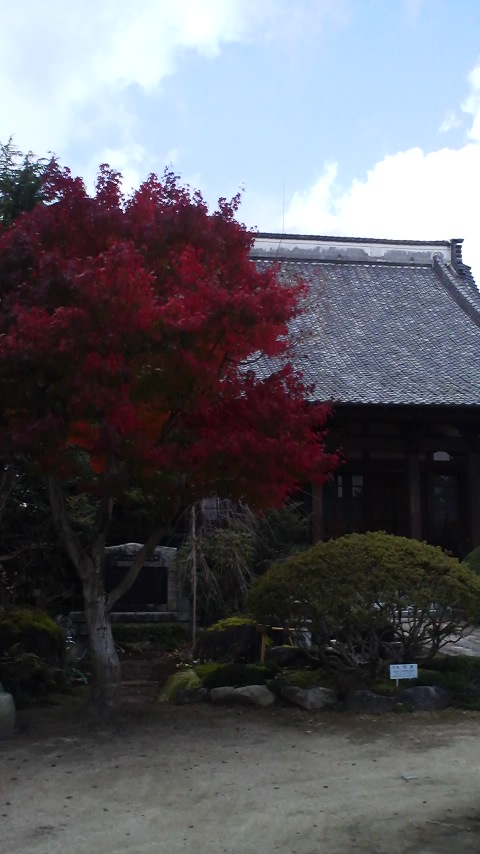 唯信寺本堂1