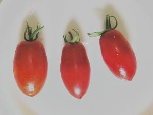 トマト「アキコ」