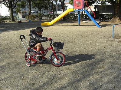 自転車に乗れたよ!