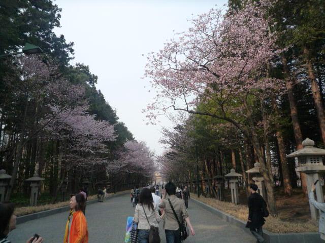 円山公園(参道)