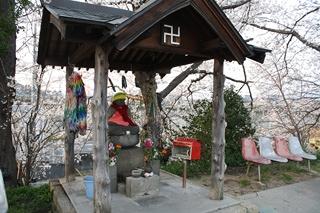 1248鎌田池桜6