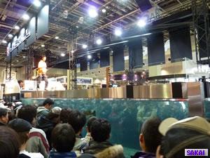 fishing-demo-1