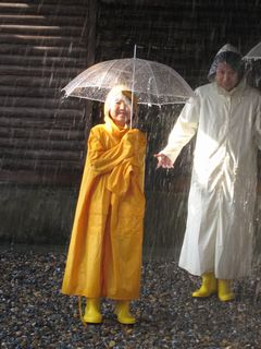 世界一の豪雨体験