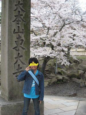 大本山東大寺