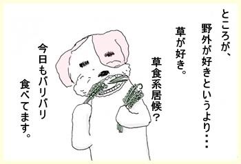 安上がり~!