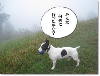 霧中に夢中3