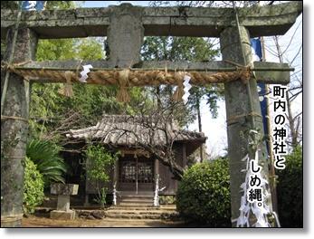 近所の神社。