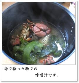 テキトーな味噌汁です。