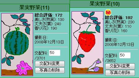果実野菜園様