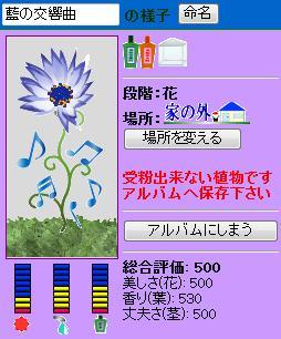 魔女ヶ茂利様081217