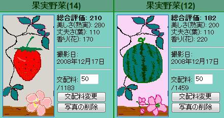 果実野菜園様081217