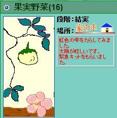 果実野菜園様081219