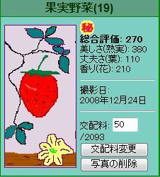 果実野菜園様081224
