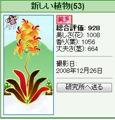 竜北植物園様081226