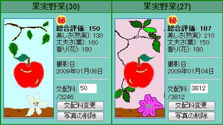 果実野菜園様090104