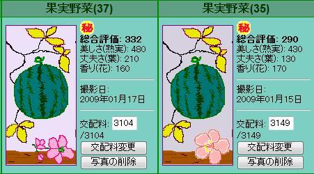 果実野菜園様090115