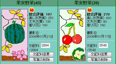 果実野菜園様090117