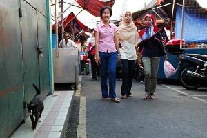 マレーシアの女性トリオと猫(左下を歩いている)