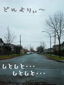 チワピン96