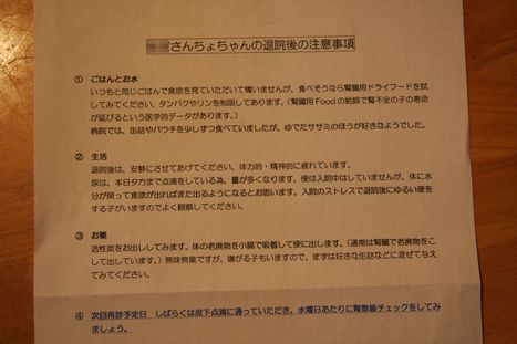 IMG_0005-1_20120331233638.jpg