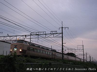 雷鳥宵闇長岡京p